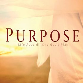 Purpose: Life According to God's Plan (The Merry Hearts Inspirational)